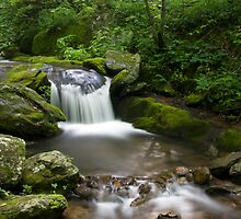 Corner rock creek by Forrest Tainio