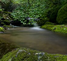 Corner rock creek two by Forrest Tainio