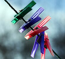 Pegs on a line by Jon Tait