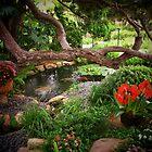 Meditation Gardens by Darlene Wilson
