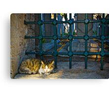 The Graveyard Cat Canvas Print