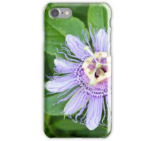 Passion Flower 4 iPhone Case/Skin