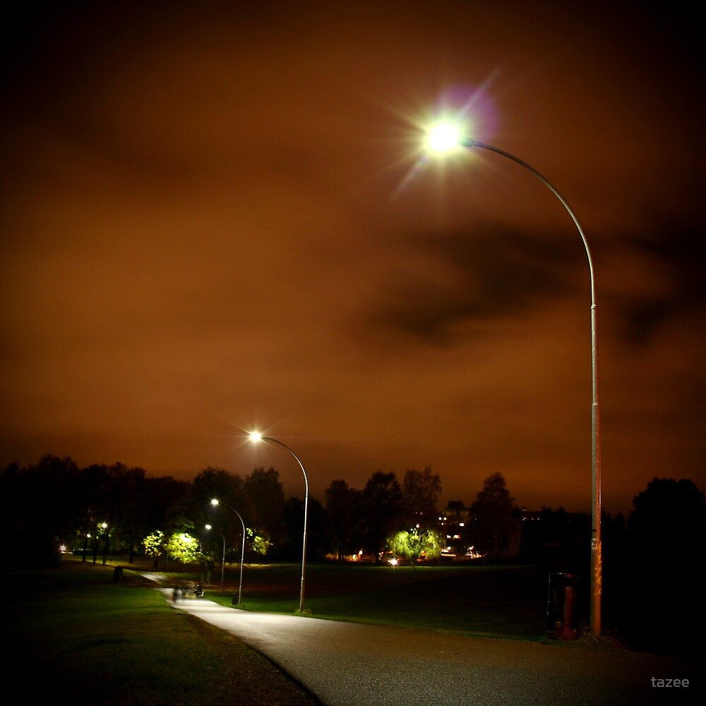 Nightlight by tazee