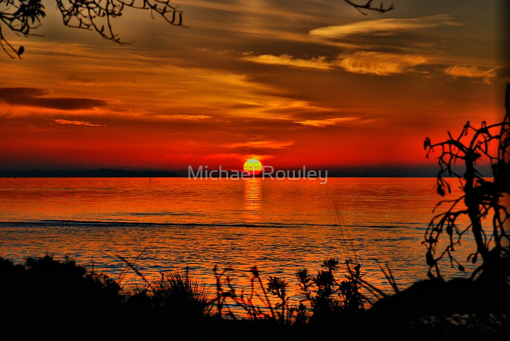 A Rosebud Sunset  by KeepsakesPhotography Michael Rowley
