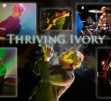 Thriving Ivory Poster by rtuttlephoto