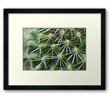 Spinning Around Framed Print