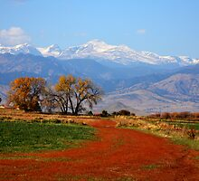 Rocky Mountains Red Road by Bo Insogna
