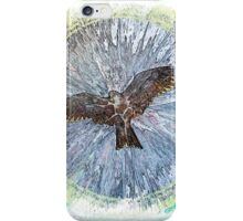 The Atlas of Dreams - Color Plate 179 iPhone Case/Skin