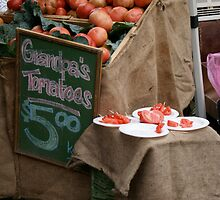 Gandpa's tomatos by Chicachica