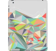 Graphic 199 iPad Case/Skin