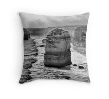 Smashed into pieces Throw Pillow