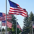Five Flags For The Fourth by Tamara Valjean