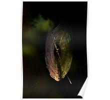 web light..... Poster