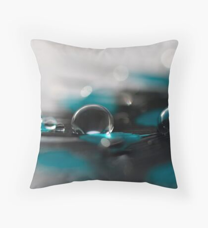 A Touch Of Teal Throw Pillow