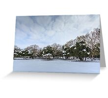Snowscape. Photographed in the Golan Heights, Israel  Greeting Card