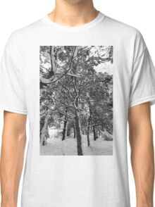 Close-up of pine leaves in snow.  Classic T-Shirt