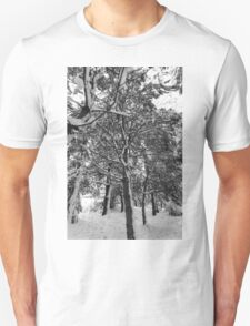 Close-up of pine leaves in snow.  T-Shirt