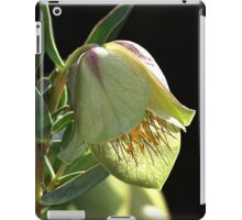 Glow Of The Bell iPad Case/Skin