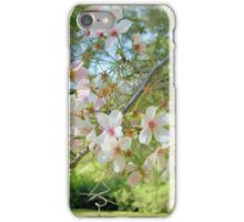 Flowering Cherry Tree iPhone Case/Skin