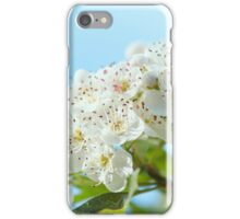 hawthorn blossoms iPhone Case/Skin
