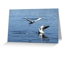 Taking off Greeting Card