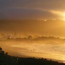 misty dusk at seaside Sulphur Creek, Tasmania by gaylene