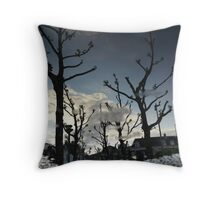 Reflections of Amsterdam - Big in Japan Throw Pillow