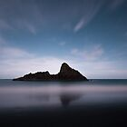 Paratahi Island by Moonlight by earlcooknz