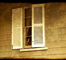 ghostly shutters by Simi