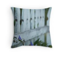 Weathered Pickets Throw Pillow