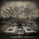 Till Death Do Us Part by Matthew Jones