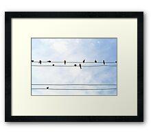 birds on wire Framed Print