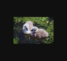 Newly Hatched Cygnets At Abbotsbury Womens Fitted T-Shirt