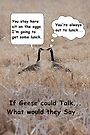 If geese could talk... by Brian Dodd