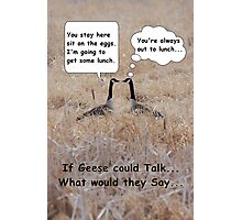 If geese could talk... Photographic Print