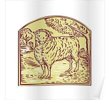 Sheep Side Pasture Tree Etching Poster