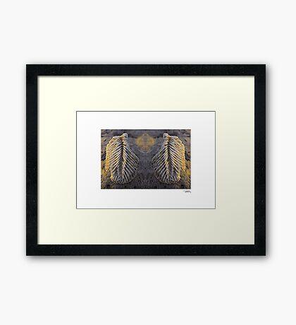 'Angels Wings' • Makawayan, Philippines Framed Print
