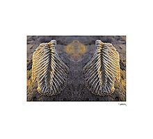 'Angels Wings' • Makawayan, Philippines Photographic Print