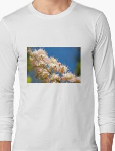 Macro of blooming Aesculus Long Sleeve T-Shirt