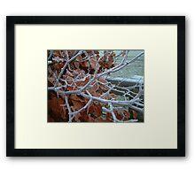 Frosty Day Framed Print
