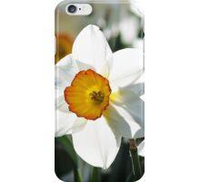 a few little dafs iPhone Case/Skin