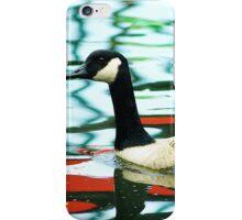goose swimming iPhone Case/Skin