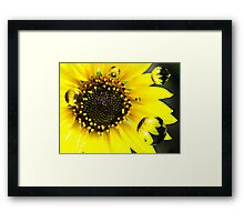 Bright and Light Framed Print