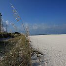 Gasparilla Island Lighthouse by kathy s gillentine