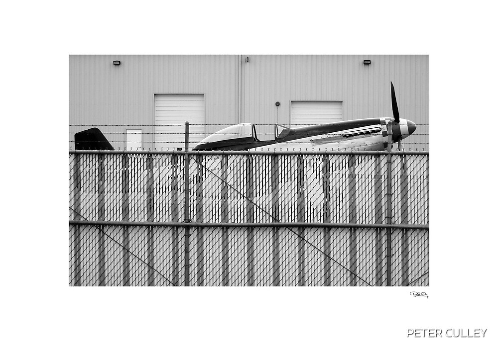 P51 by PETER CULLEY