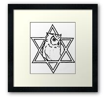 The owl of wisdom Framed Print