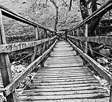 Short walk to the gate by Jim Kernan
