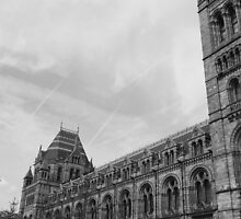 Natural History Museum London by cornishgirlie
