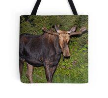 Nightwalker: Bull Moose Tote Bag