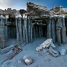 Mono Lake Sand Tufa by Nolan Nitschke
